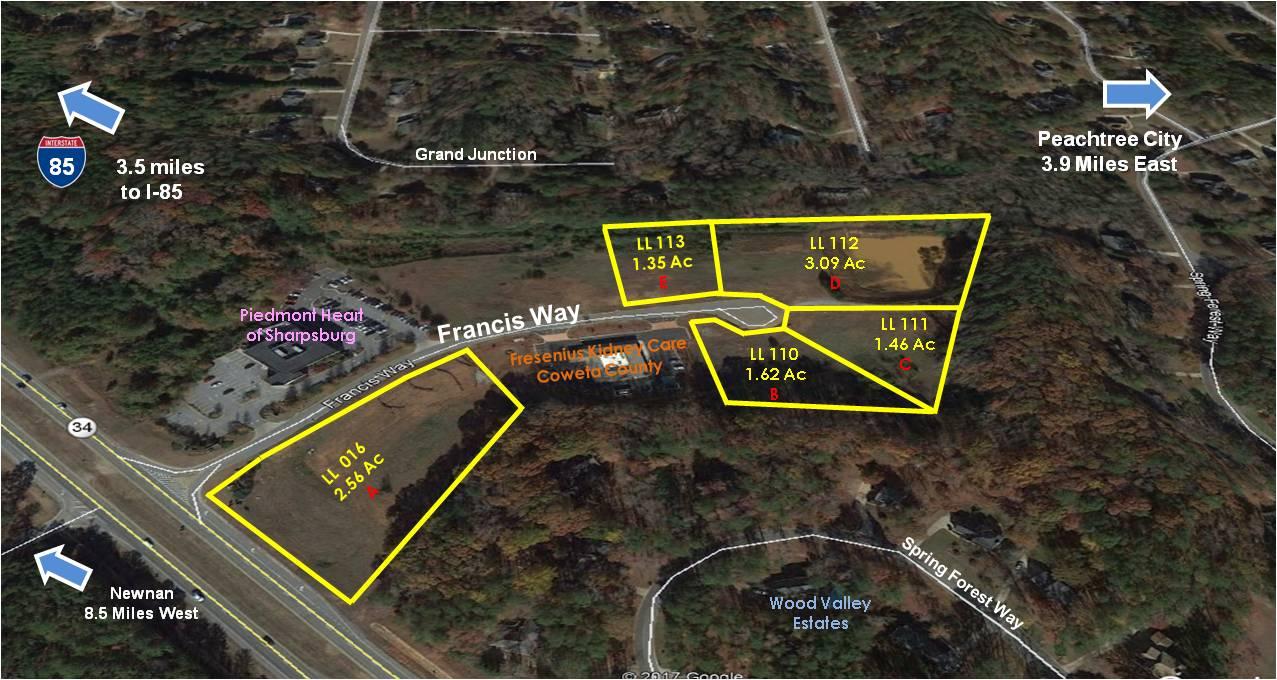 Francis Place Professional Park, Sharpsburg, GA  30277