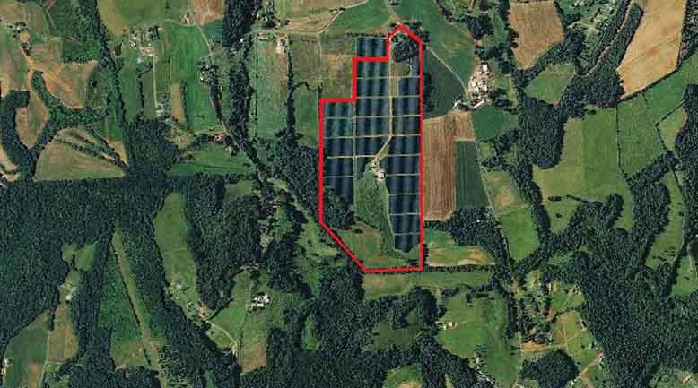 Sunnyridge Owl's Den Farm
